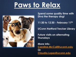 Paws to Relax 2016 Slide